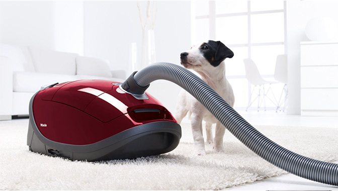 Beste Miele Complete C3 Cat & Dog