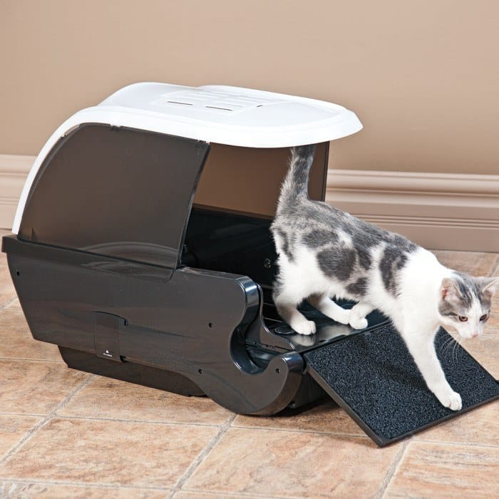 Best Travel Litter Boxes